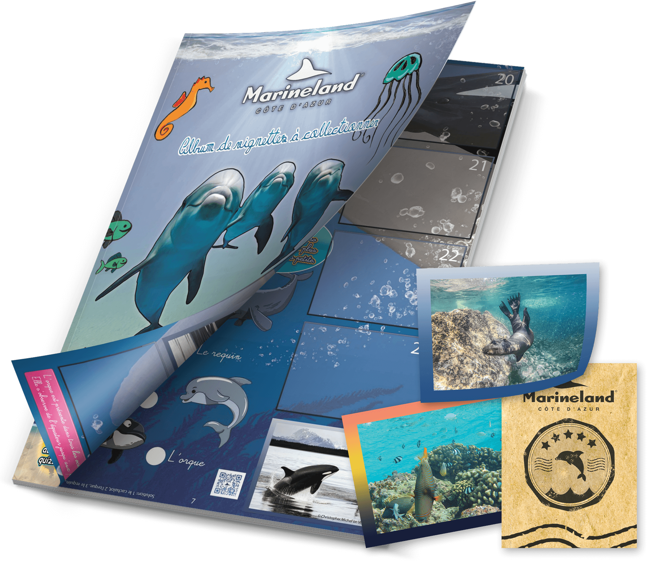 Visuel Album MARINELAND